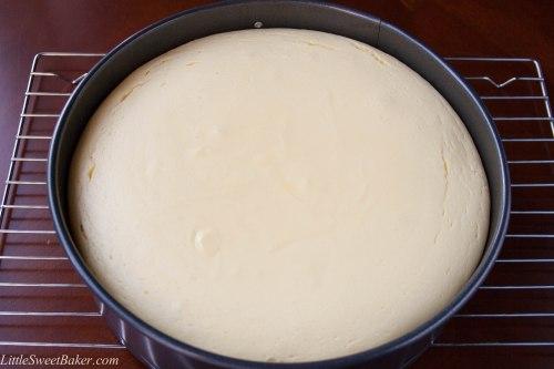 how to make a cheesecake-3