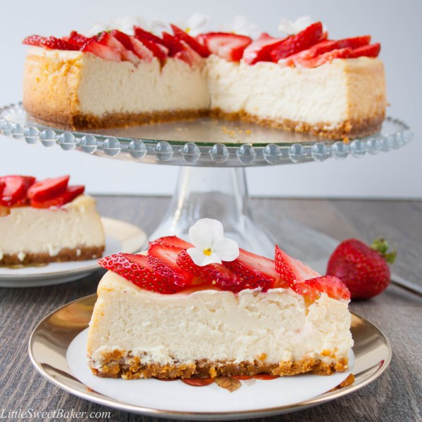 WHITE CHOCOLATE CHEESECAKE. A smooth creamy rich white chocolate cheesecake over a honey graham cracker hazelnut crust.