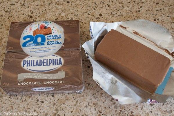 chocolate cinnamon cheesecake-1